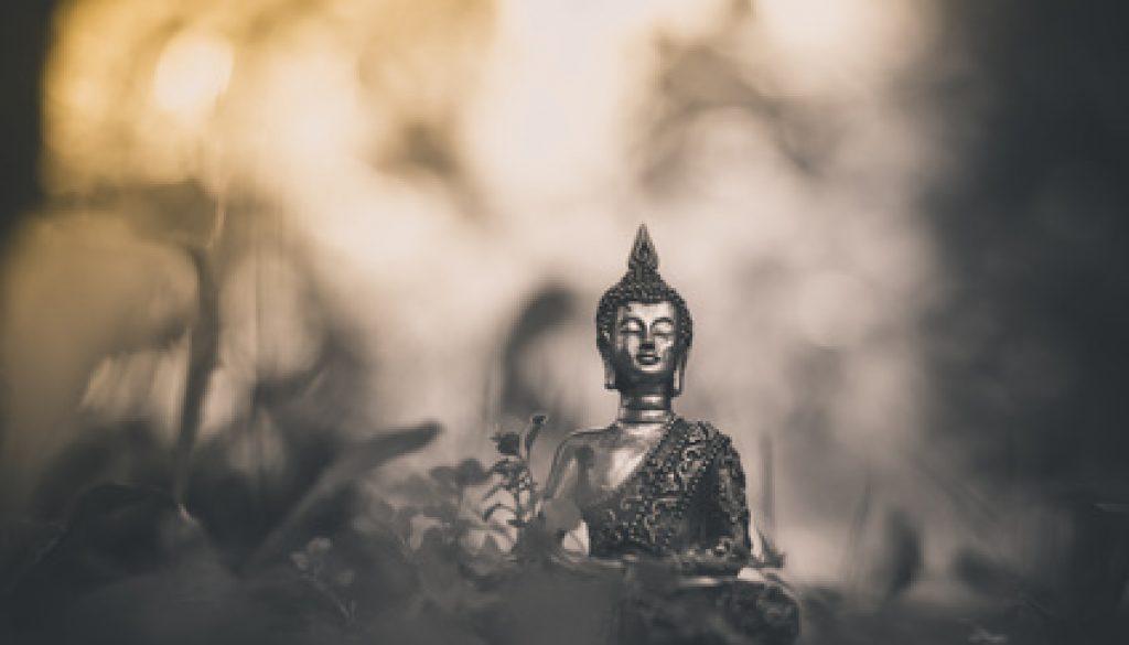Sagesse Bouddhiste Citation Sur La Vie